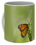 Those Magnificent Monarchs - Danaus Plexippus Coffee Mug