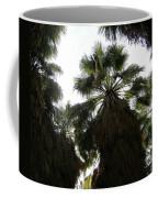 Thousand Palms Canyon Coffee Mug