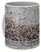 Thousands Of Snow Geese Coffee Mug