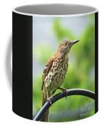 Thrasher 2 Coffee Mug