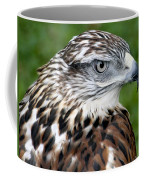 The Threat Of A Predator Hawk Coffee Mug