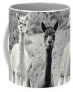 Three Alpaca Friends Coffee Mug