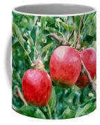 Three Apples On Tree Coffee Mug