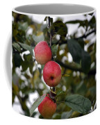 Three Apples Coffee Mug