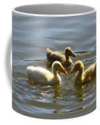 Three Baby Ducks Swimming Coffee Mug