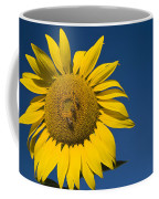 Three Bees And A Sunflower Coffee Mug by Adam Romanowicz