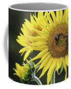 Three Bees On A Sunflower Coffee Mug