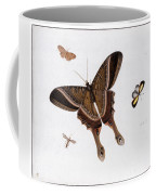 Three Butterflies And A Gnat Coffee Mug