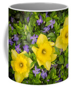 Three Daffodils In Blooming Periwinkle Coffee Mug