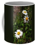 Three Daisies Coffee Mug