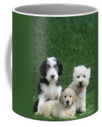 Three Diffferent Puppies Coffee Mug