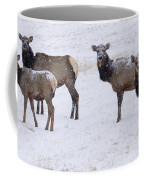 Three Elk Cows And Calf Coffee Mug