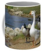 Three Geese Just Srolling Along Coffee Mug