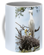 Three Great Egret Chicks In Nest Coffee Mug by Carol Groenen
