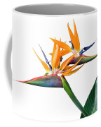 Three Heads Are Better Than One Coffee Mug by Denise Bird