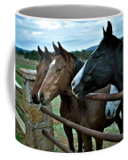 Three Horses Waiting For Carrots Coffee Mug