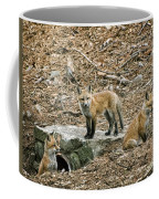Three Kits Coffee Mug
