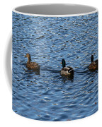 Three Mallard Ducks Coffee Mug