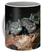 Three Musketeers Coffee Mug