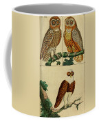 Three Owls Coffee Mug