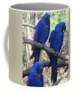 Three Pals Coffee Mug