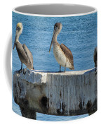 Three Pelicans Coffee Mug