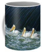 Three Pelicans Hanging Out  Coffee Mug