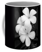 Three Plumeria Flowers In Black And White Coffee Mug