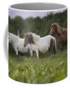 Three Ponies Coffee Mug