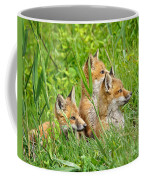 Three Red Fox Pups Coffee Mug