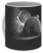 Three Seashells Coffee Mug