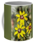 Three Sister Wildflowers Coffee Mug