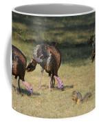 Three Toms And A Squirrel Coffee Mug