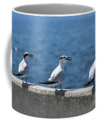 Three Turning Terns Coffee Mug