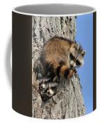 Three Young Raccoons Coffee Mug