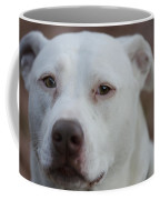 Through The Eyes Of A Pitbull II  Coffee Mug