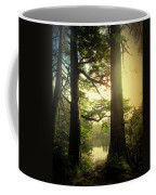 Through The Forest To The Lake Coffee Mug