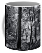 Through The Trees In Black And White Coffee Mug
