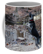 Throwing Stones Coffee Mug