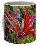 Red Ti Plant Coffee Mug