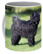 Tibetan Terrier Dog Standing Coffee Mug
