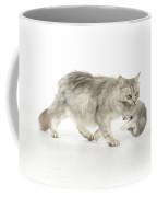 Tiffanie Cat And Kitten Coffee Mug