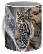 Sumatran Tiger-5418 Coffee Mug