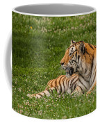 Tiger At Rest 3 Coffee Mug
