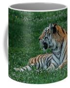 Tiger At Rest 4 Coffee Mug
