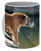 Tiger Breathing Into Cold Air By The Water Coffee Mug