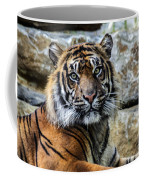 Tiger Facing The Crowd Coffee Mug