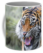 Tiger Growl Coffee Mug