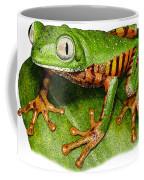 Tiger-legged Monkey Frog Coffee Mug