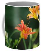 Tiger Lily And Bud   # Coffee Mug